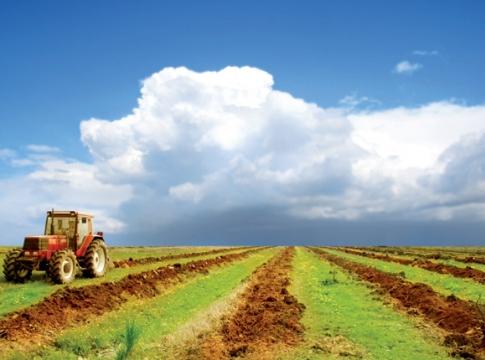 afd-agriculture-maroc-vert